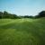 芝の水はけを良くするためのひと工夫!